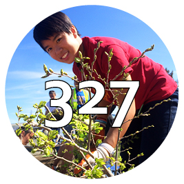 327 trees planted