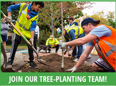Planting Leader Training (join our team)