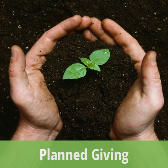 Tile - Planned Giving